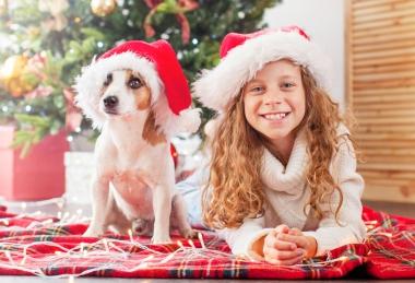 Karácsony a Palace-ban